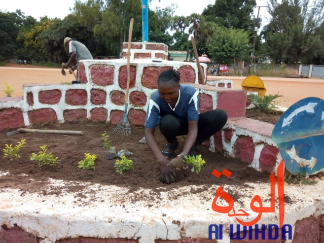 Tchad : fleuriste et mère, Denemadji Koulamadji prend en charge sa famille avec son métier. © Golmem Ali/Alwihda Info