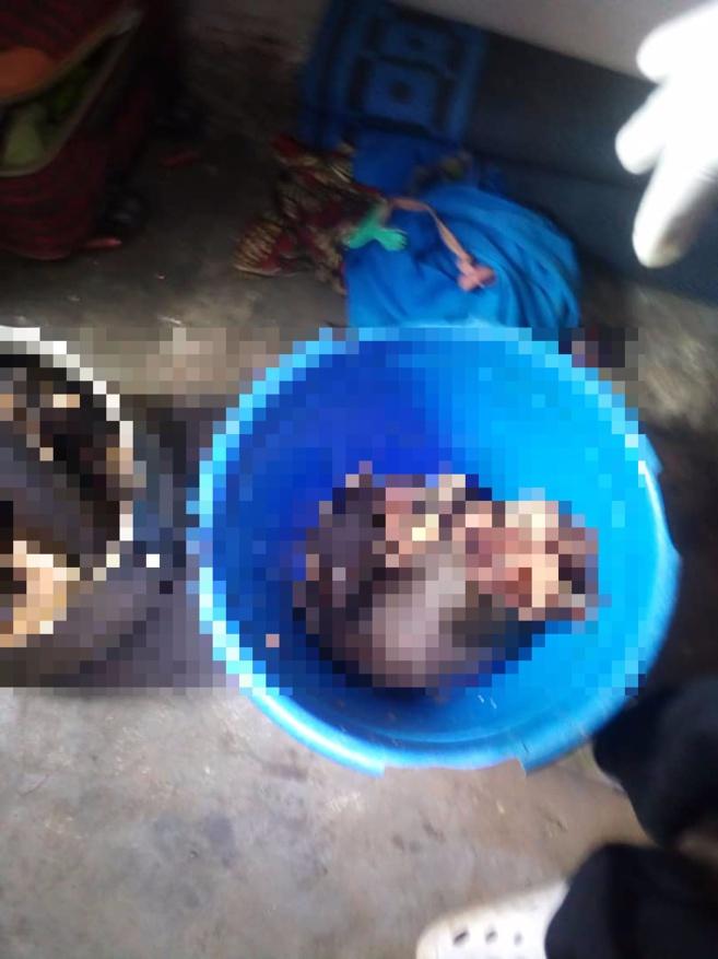 Cameroun : une mère égorge ses deux fillettes et cuisine les corps dans une marmite