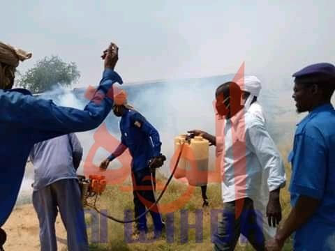 Tchad - Chikungunya : Biltine reçoit l'appui de la voirie d'Abéché pour la pulvérisation