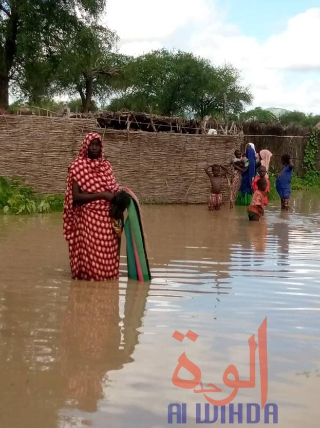 Tchad : 300 000 personnes en insécurité alimentaire sévère à l'Est