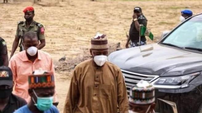Nigeria : un âne