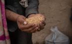 De nouvelles recherches montrent l'impact économique dévastateur du Covid-19 sur les personnes déplacées