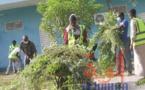 Tchad : des jeunes volontaires nettoient l'Université virtuelle pour faciliter la reprise