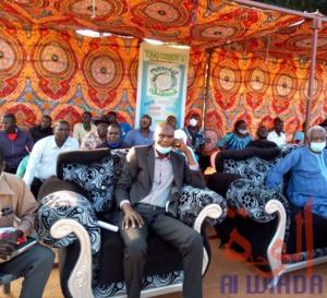 Tchad Consensus veut mobiliser la jeunesse pour qu'elle s'exprime et contribue au développement