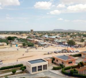 Tchad : au moins 25.661 cas de Chikungunya et un décès enregistrés au Ouaddaï