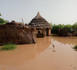 Tchad : face aux inondations, l'UE alloue plus de 328 millions Fcfa pour l'aide humanitaire