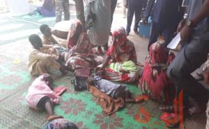 Tchad - Chikungunya : un plan de réponse de 5,3 milliards Fcfa, plus de 24.000 cas