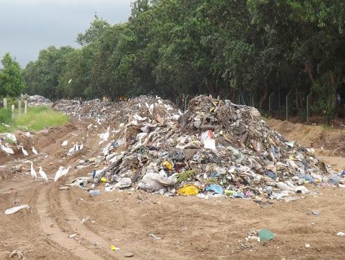 L'ABACO encourage une réelle politique de salubrité publique en RD Congo