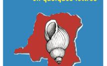 Une quatrième République au Congo-Kinshasa ?