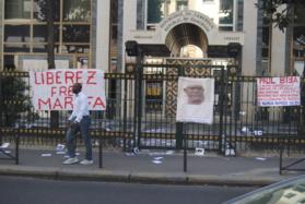 Panique à l'ambassade du Cameroun à Paris ce matin :  Les  amis de Marafa Hamidou Yaya sévissent