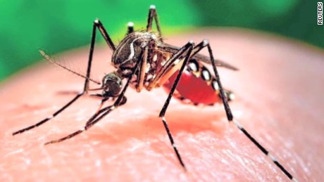 AfDB approves a US $2-million grant to Cape Verde and Guinea Bissau to fight the Zika virus outbreak