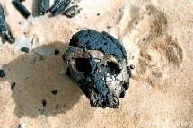 Le crâne fossile de Toumaï, découvert en 2001 au Tchad, a-t-il bien 7 millions d'années ?