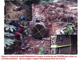 Cameroun: Soutien Total au journaliste Nestor Nga ETOGA et ALWIHDA-INFO