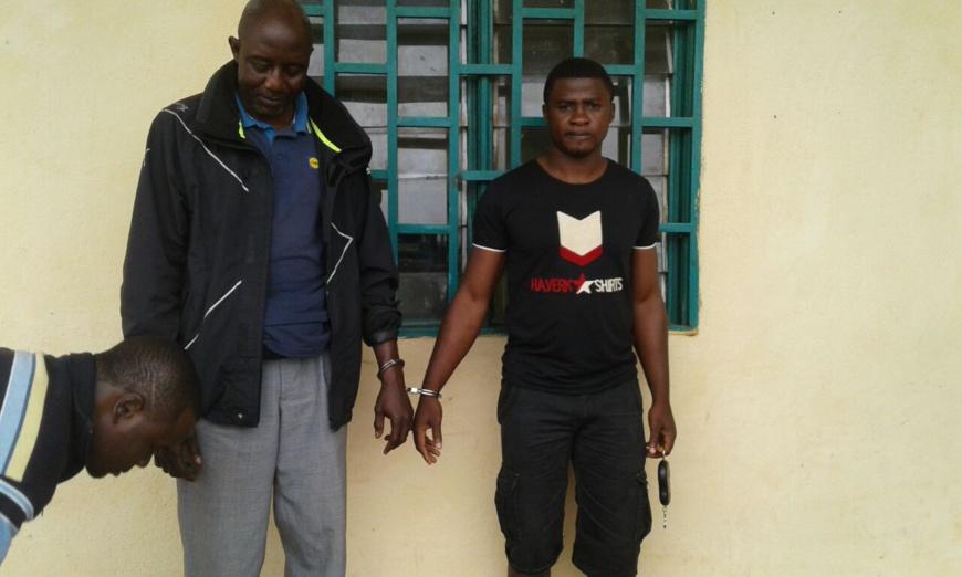 Cameroun/Tibati : deux trafiquants de pangolins aux arrêts