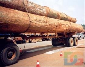 CAMEROUN: Un camion grumier de la société forestiére FIPCAM en infraction, bloqué au pesage routier.