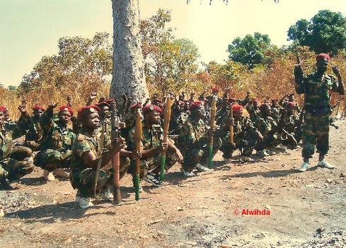 le détachement des rebelles du FDPC de Miskine responsables de l'embuscade