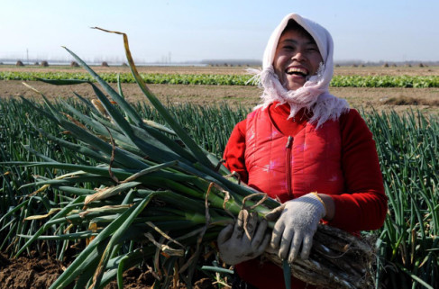 China's anti-graft efforts provide boost to  poverty relief work