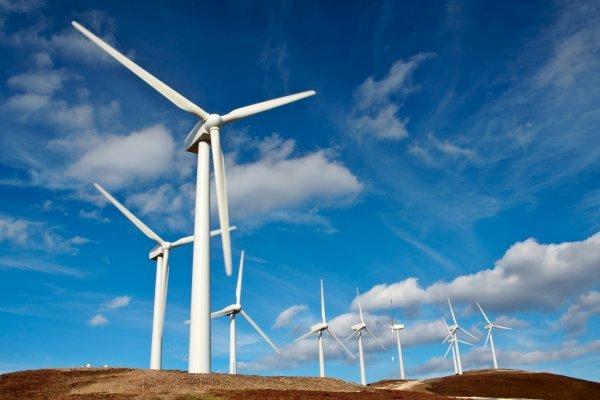 Des éoliennes. Crédits photo : Sources