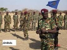 Tchad : Reportage Exclusif sur les forces rebéllion de l'ex-RDL du Capitaine Mahamat Nour