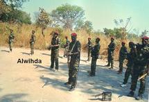 Tchad : Un nouveau front au sud du pays, des tchadiens en exil, créent un mouvement depuis le Cameroun