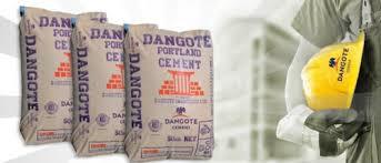 """""""Nous sommes les leaders de production du ciment en Afrique"""", Directeur de Dangoté"""