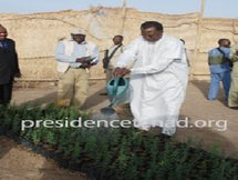 Tchad : L'opération ceinture verte autour de la capitale N'Djaména, un succès pour I. Déby ?