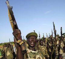 Le MJE lance une offensive, 20 morts et 31 blessés au sein de l'armée soudanaise