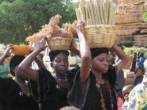 Tchad : Les prix du mil et du mais en hausse a N'Djamena