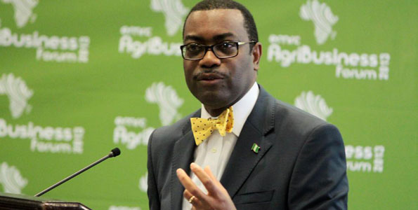African Development Bank President Akinwumi Adesina. PHOTO | CYRIL NDEGEYA