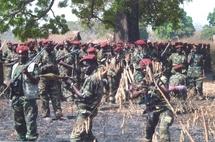 Centrafrique:Le FDPC durcit le ton après l'enlèvement de ses deux éléments