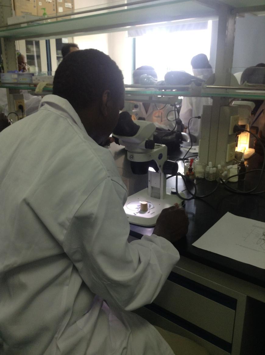 Dr Djiddi Ali Sougoudi en examen microscopique de l'identification des anophèles. (2): Dr Djiddi Ali Sougoudi et Mme Tsugu, championne chinoise de microscopie de parasites aux olympiades de Chine lors de la formation sur la microscopie à l'institut des maladies parasitaires de Jiangsu.