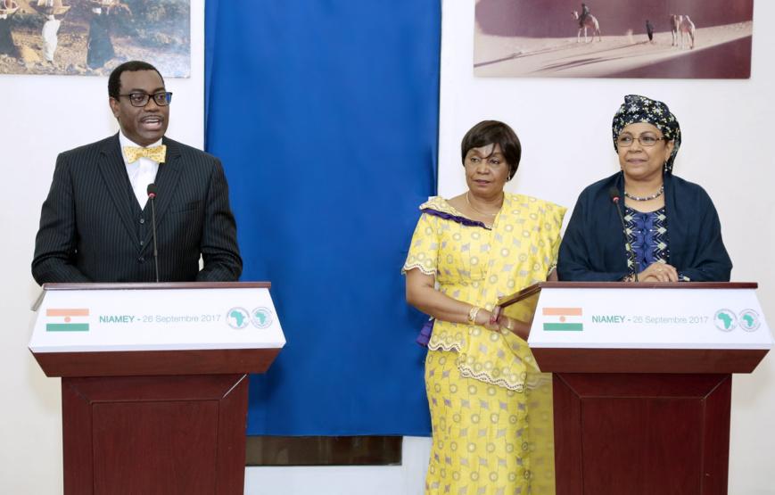 Niger : Akinwumi Adesina, élevé à la dignité de Grand officier de l'ordre du Mérite