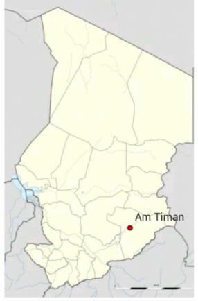 Am Timan : Une femme retrouvée morte avec une dizaine de coups de couteau