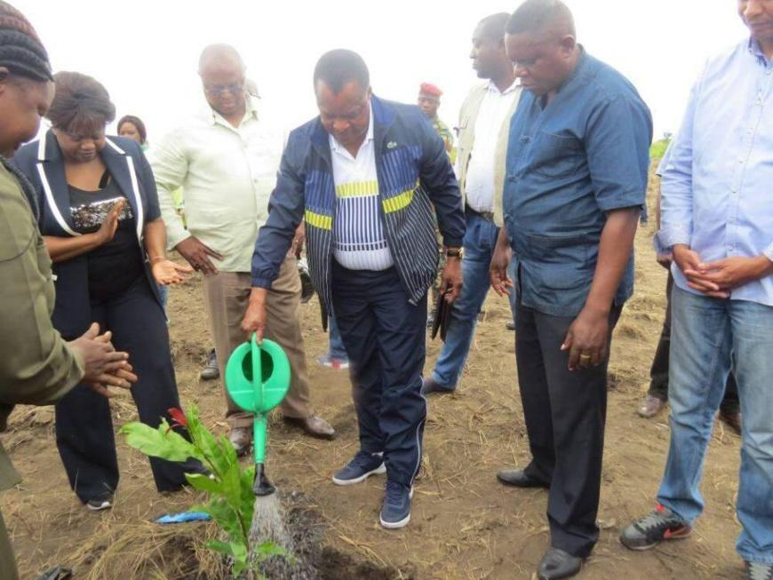 Denis Sassou N'Guesso accomplissant son devoir de planting.