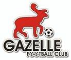 Gazelle FC (Tchad) se qualifie pour la ligue des champions façe à Bayelsa united (Nigeria)