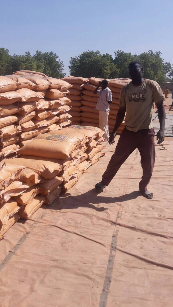 Sarh : La douane mobile intercepte une myriade de marchandise frauduleuse