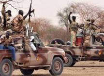 Des troupes de l'armée tchadienne.