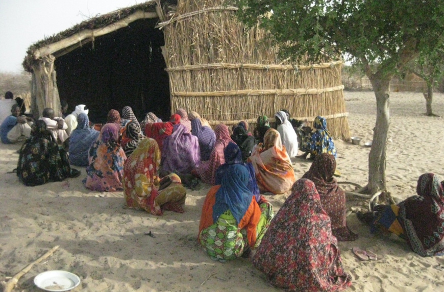 Tchad : le CEDPE appelle les pays du Lac Tchad à accélérer le développement