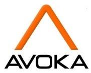 Avoka publie les résultats de sa nouvelle étude sur les ventes digitales dans le secteur bancaire