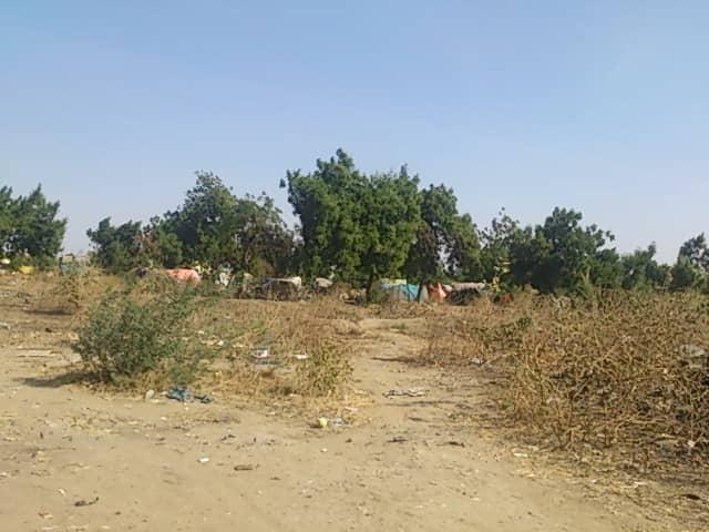 N'Djamena : un trentenaire assassiné derrière le Palais du 15 janvier. © Alwihda Info
