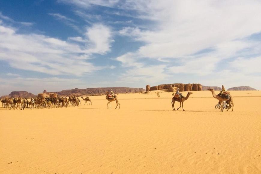 Une zone désertique au Tchad. © AFD