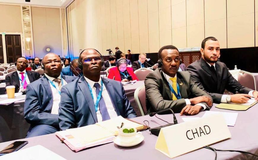 L'ex-ministre du Pétrole, Boukar Michel (gauche) et l'Ambassadeur du Tchad à Abou Dhabi, Zakaria Idriss Déby. © DR