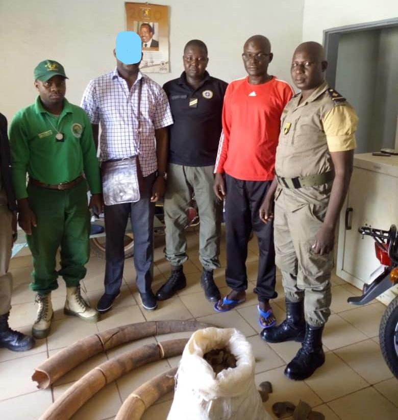 Une équipe de douaniers, de gendarmes et d'agents de la faune avec des produits en ivoire.