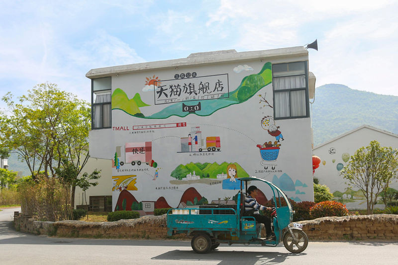Photo taken on April 18 shows a piece of advertisement painted on the wall of a cooperative in Chaohu city, east China's Anhui province. The cooperative follows the concept of building villages with their distinctive products and industries, and prioritizes the development of three villages: one that sells products via e-commerce platforms, one that displays local folk customs to tourists and one that runs catering and accommodation businesses. The cooperative has achieved integrated development of distinctive farm products, processing, e-commerce and logistics, accommodation and catering and leisure tourism.