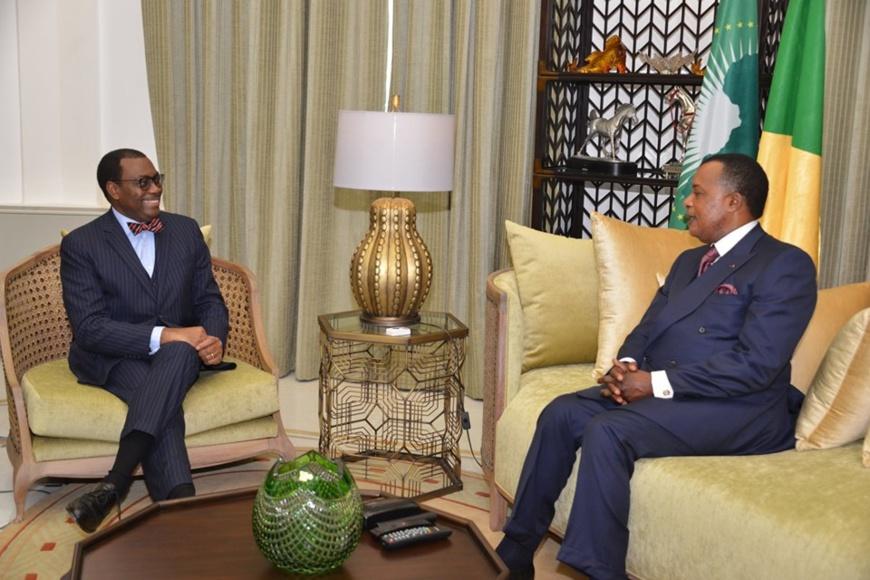 Denis Sassou N'Guesso et Akinwumi Adesina, au cours de leurs échanges