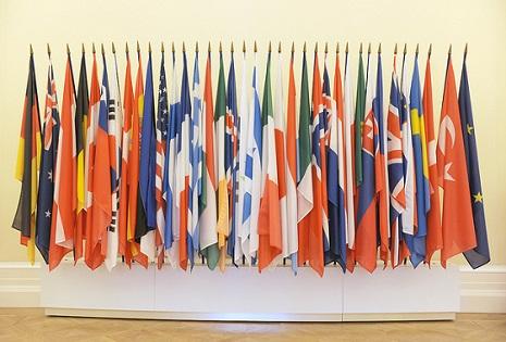 Des drapeaux de l'OCDE. © DR