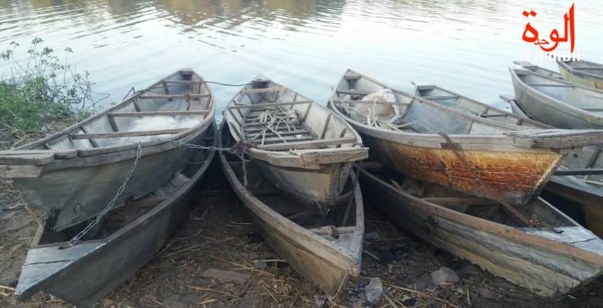 Des pirogues près d'un fleuve, au Lac Tchad. © Alwihda Info