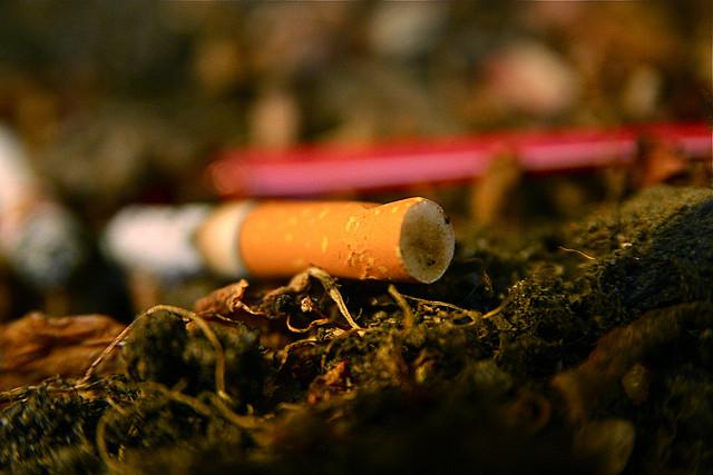 Cigarette. Illustration. ©DR