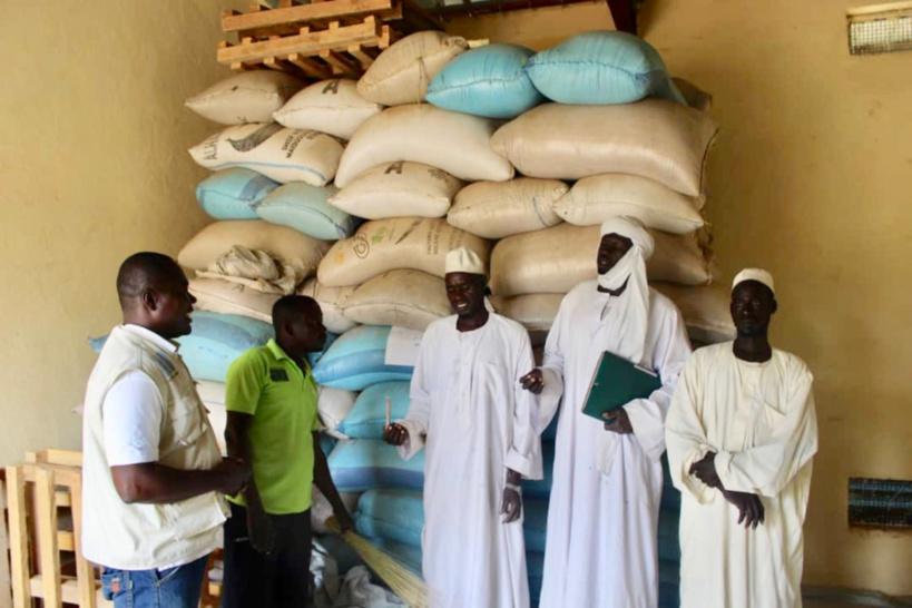 Tchad : ces femmes battantes de Mangalmé