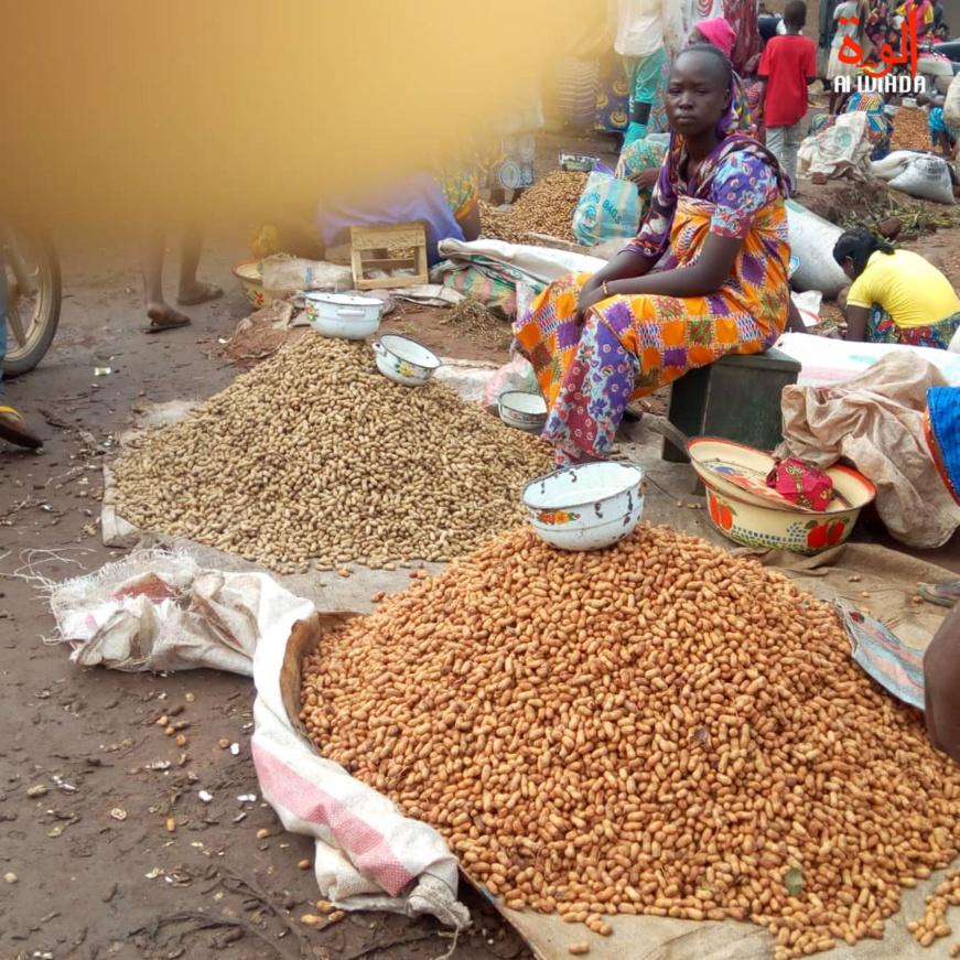 Tchad : au Logone Occidental, les ménages allégés par la baisse des prix